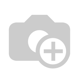 ROOBAR Brownie Ball Choco Chip Coconut 40g